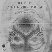 The Ripped - Molecular Disappearance