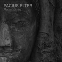 Pacius Elter - Recombined