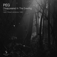 PEG - Disappeared In The Evening