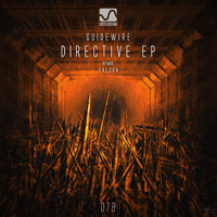 Guidewire - Directive EP