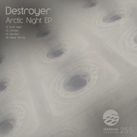 Destroyer - Arctic Night EP