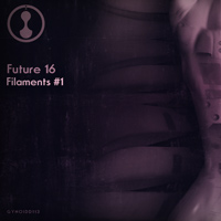 Future 16 – Filaments # 1