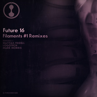Future 16 – Filaments #1 Remixes