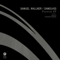 Samuel Wallner and Damolh33 - Pacotize EP