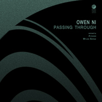 Owen Ni - Passing Through