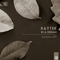 Raytek – In A Dream