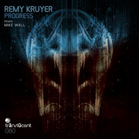 Remy Kruyer - Progress