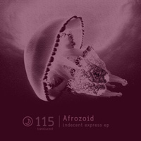 Afrozoid - Indecent Express EP