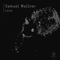 Samuel Wallner - Save