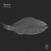 Noaria – Reflection