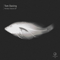 Tom Dazing – Perfect Storm EP